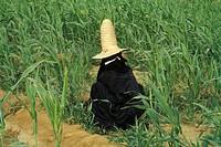 yemen, asia, wadi doan