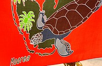 Close_up of a painting of a turtle, Moorea, Tahiti, French Polynesia, South Pacific