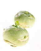 Bright White serie: Brassica oleracea convar. acephala var. gongylodes