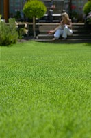 Lawn with woman in background