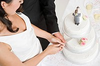 Bride and groom cutting a wedding cake (thumbnail)