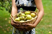 A woman holding a basket of green apples