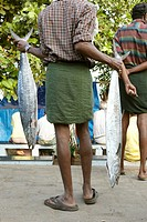 Indian man holding freshly caught fish in his hands