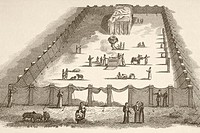 The Tabernacle in the Wilderness including the Court of the Tabernacle  From a 19th century illustration