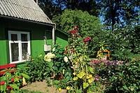 maison de Nida, presqu´ile de Courlande,Lituanie,pays baltes,europe du nord