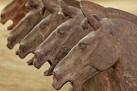 Horses at the Terra Cotta Warriors in Xi'an China