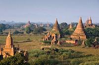 Pagoda field, temples, Zedi, Old Bagan, Pagan, Burma, Myanmar, Asia