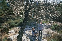 Photograph of cople of kids watching the blossom of the Almond tree in Park Canada Jerusalem mountain