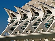 Architectural detail of the Principe Felipe Science Museum, City of Arts and Sciences by Santiago Calatrava, Valencia. Comunidad Valenciana, Spain