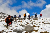 Trekking, hiking group walking in single file on an uphill path through the snow, Shug-La Pass 5250 m, an old pilgrim route through the mountains from...
