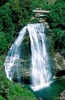Mokau falls, New Zealand, Northern Island