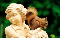 European red squirrel, Eurasian red squirrel Sciurus vulgaris, sitting on sculptur, Germany