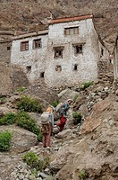 Women carrying building sand to the higher part of the monastery, Hemis, Northern India, India, Himalayas
