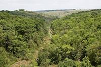 Basin of the Córrego Tucum, São Pedro, São Paulo, Brazil