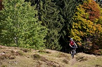 Mountainbiker on Gaisberg mountain, Rettenbach, Tyrol, Austria, Europe