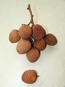 Lychee nut Litchi chinensis, São Paulo, Brazil