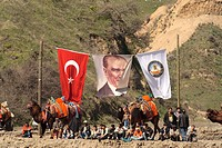 dromedary, one_humped camel Camelus dromedarius, fighting camels with turkish flag and a banner with Ata Tuerk, Turkey, tuerkische Aegaeis, Kuyucak