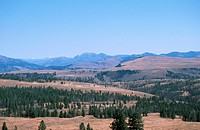 landscape of the Rocky Mountains, USA, Wyoming, Yellowstone NP