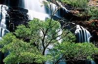 MacKenzie Falls in Grampians National Park, Australia, Victoria, Grampians National Park