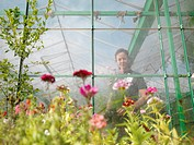 Female Gardener In Greenhouse