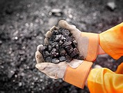 Coal Worker With Handful Of Coal