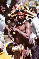 portrait of a man, Tari warrior, Southern Highlands, Papua New Guinea