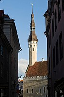 Townhall, Tallinn, Estonia, Baltic States