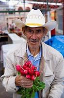 Mercado Ignacio Ramírez market, a k a  Mercado El Nigromante, San Miguel de Allende, Mexico