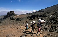 Mount Kilimanjaro, porters at the Lava tower 4600m, Tanzania, Kilimanjaro National Park