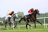 horses race, two race horses with jockeys, Germany, Baden_Baden
