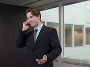 Businessman on cellphone (thumbnail)