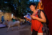 Female backpacker reading guidebook with cow passing at dusk