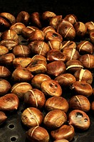 Sweet Chestnuts (Castanea)