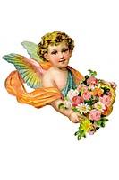 Child boy cupid putto putti wings rose cute virginity religion beliefs kitsch nostalgia romantic sentimental chromos ephemera cutout decorative arts v...