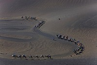 Tour on Dromedary Camels (Camelus dromedarius) through the Montanas del Fuego Mountains of the Timanfaya National Park, Lanzarote, Canary Islands, Spa...