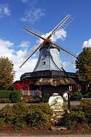 Historic windmill in dutch style, Pirsch Mill, Hamfeld Mill, restaurant, hotel, Hamfelde, Herzogtum Lauenburg, Schleswig-Holstein, Germany, Europe