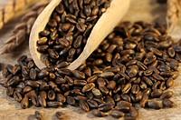 Roasted spelt grains