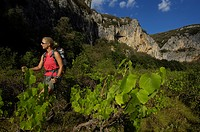 Hiking in the canyon, Vallon Pont d´Arc, Ardeche, Rhone Alps, France, Europe