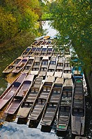 Chaffeured punts at Cherwell canal Oxford England UK Europe