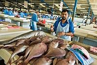 Fish market, Deira, Dubai, United Arab Emirates