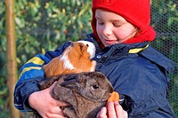girl with guinea pig and rabbit on her arms