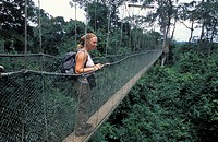 Tourist on the canopy walk, 350m long walkway, 40m high in rainforest, Ghana, Kakum National Park