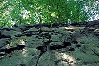 sandstone, Germany, Rhineland_Palatinate, Suedeifel