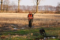 battue hunter in field landscape with hunting dog, Germany, Lower Saxony