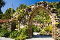 Tresco Abbey Sub Tropical Gardens in summer sunshine Tresco Isles of Scilly Cornwall England UK United Kingdom GB Great Britain British Isles Europe E...