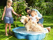 Mother, daughter and son washing the dog