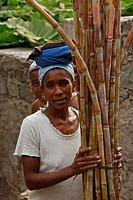 Woman harvesting sugarcane, Santo Antao Island, Cape Verde, Africa