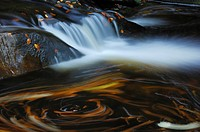 forest creek, waterfall and turbulence, Germany, Bavaria, National Park Bavarian Forest