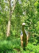 Apatosaurus, Brontosaurus Apatosaurus, Brontosaurus, portrait