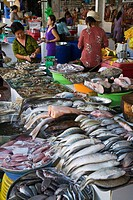 Numerous varieties of fish on sale outside the BEN THANH MARKET, Vietnam, Saigon